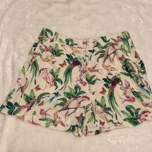 Ann Taylor Bird Shorts